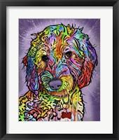 Framed Sweet Poodle