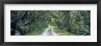 Framed Going Home