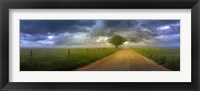 Framed Road Home