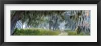 Framed Memory Lane