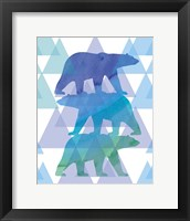 Framed Geometric Polar