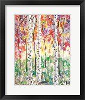Framed Colorful Birch Forest