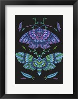Framed Animals Lovers - Butterflies