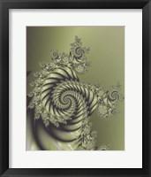 Framed Spirale Nuovo