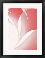 Framed Petals II