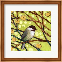 Framed Modern Bird I