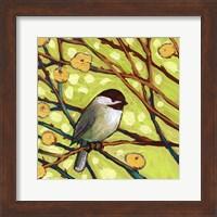 Framed Modern Bird I