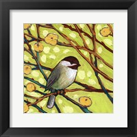 Modern Bird I Framed Print