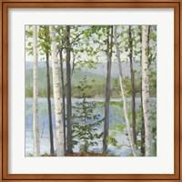 Framed Cooper Lake I