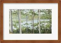 Framed Birch Lake