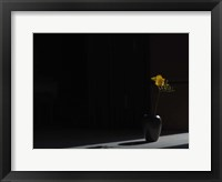 Framed Void (Still Life in Moonlight)