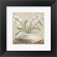 Framed White Flowers in Brown