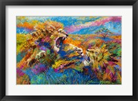 Framed Pride Fight in the Savanna - African Lions