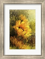 Framed Impressionist Sunflowers