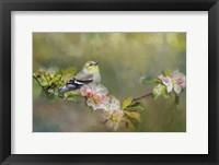 Framed Goldfinch In The Garden