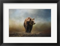 Framed Grizzly On The Rocks