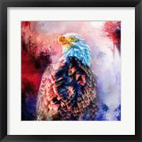 Framed Jazzy Bald Eagle