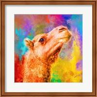 Framed Jazzy Camel