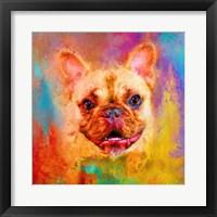 Framed Jazzy French Bulldog