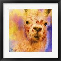 Framed Jazzy Llama