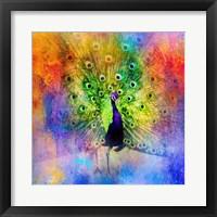 Framed Jazzy Peacock