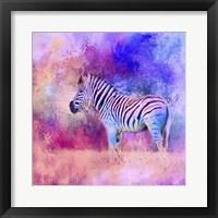 Framed Jazzy Zebra Pink And Purple