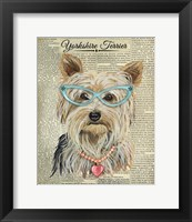 Framed Yorkshire Terrier