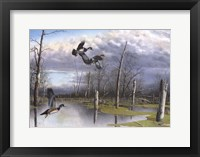 Framed Backwater Woodies
