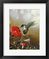 Framed Ruby Throated Hummingbird