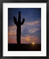 Framed Tequila Sunset