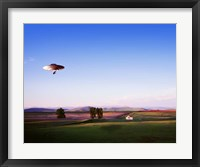 Framed Montana Flying Saucer