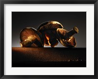 Framed Mushroom On Ledge