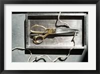 Framed Snip