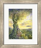 Framed Nature's Embrace