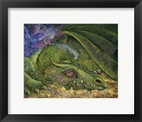 Framed Never Tickle A Sleeping Dragon