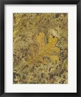 Framed Oak Leaf