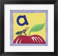 ABC A Framed Print