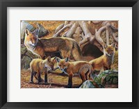 Framed Front Porch Fox Family