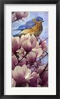 Framed Bluebird Magnolias