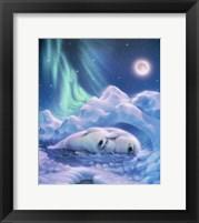Framed Harmony Baby Seals