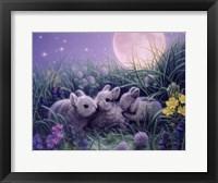 Framed Moon Babies