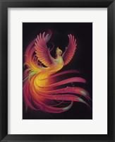 Framed Phoenix
