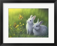 Framed Buttercups