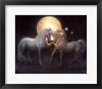 Framed Moondance