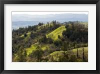 Framed Over the Hill