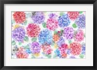 Framed Festive Flower Patterns XI