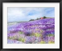 Framed Lavender I