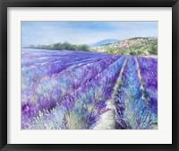 Framed Lavender IV