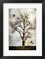 Framed Cottonwood Tree Part 2