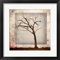 Framed Cottonwood Tree Part 5